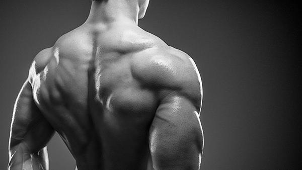 6 Idiotsäkra Hemligheter Till Muskler och Styrka