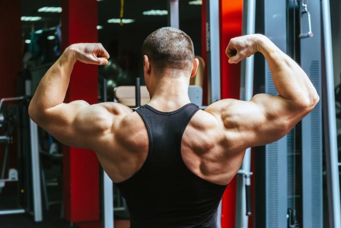 Gå Ner I Vikt Och Bygga Muskler Samtidigt