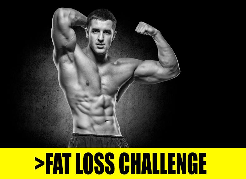 fat loss challenge gul