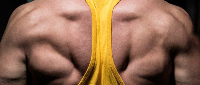 7 hard gainer-hemligheter – fler okända taktiker för att gå upp i vikt