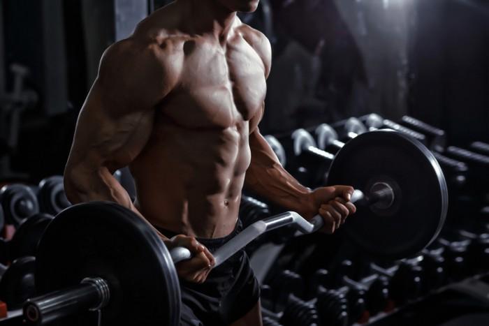stora biceps och triceps