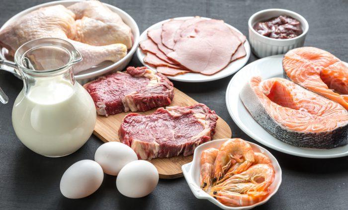 Ar protein viktigt