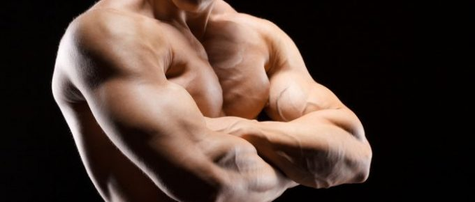 Bästa Sättet Att Bygga Muskler: 4 Nycklar Som Maximerar Hypertrofi