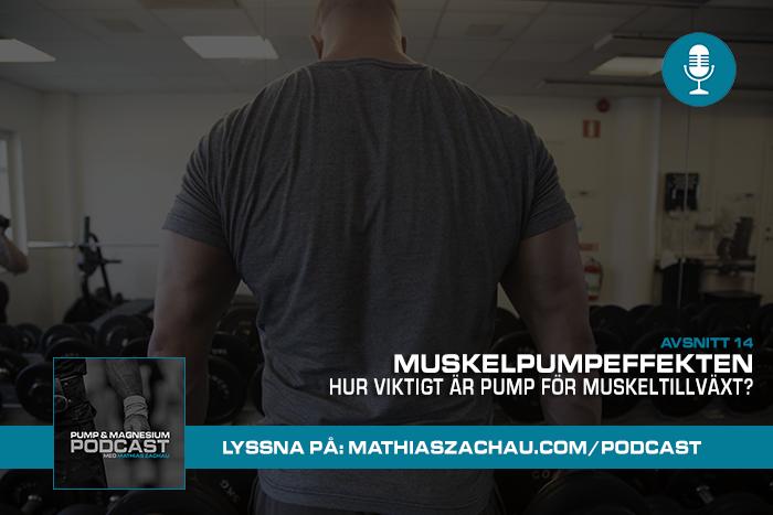 hur viktigt ar pump for muskeltillvaxt