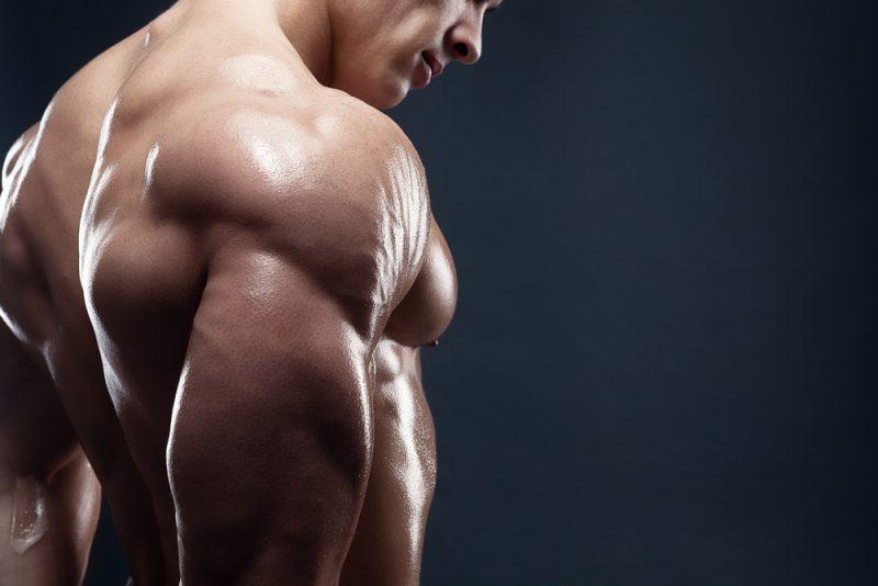 triceps-bygga-muskler