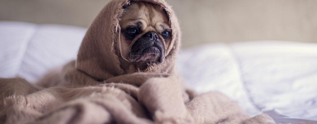 Hemskt sömnproblem efter sent kvällspass