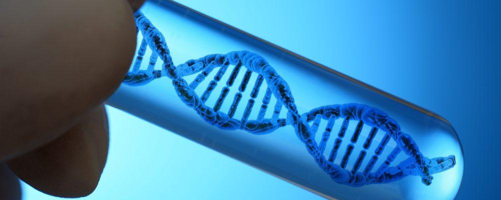 Träna olika muskelgrupper olika mycket – en genetisk fråga?